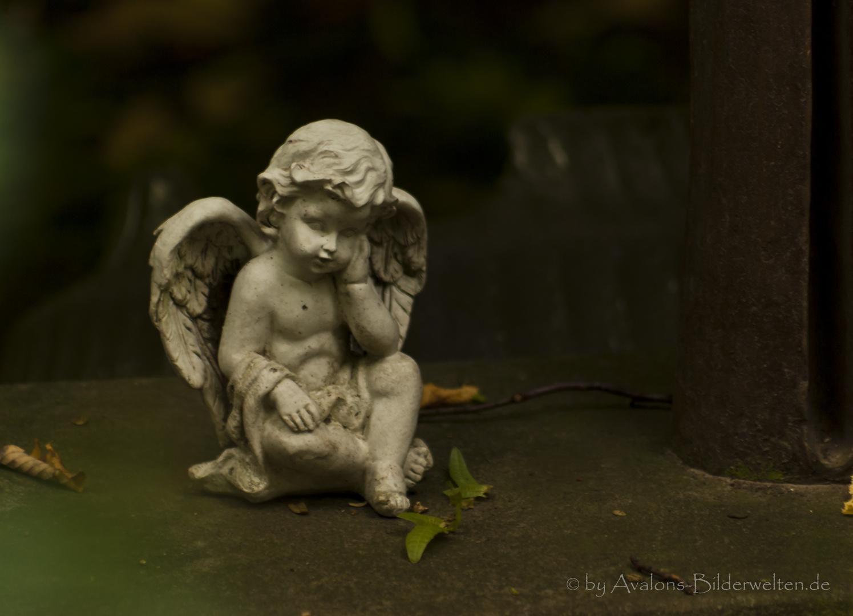 Auch Du wirst kommen..... - Hauptfriedhof Dortmund IX
