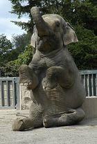"""Auch ein Elefant kann """"Männchen"""" machen"""