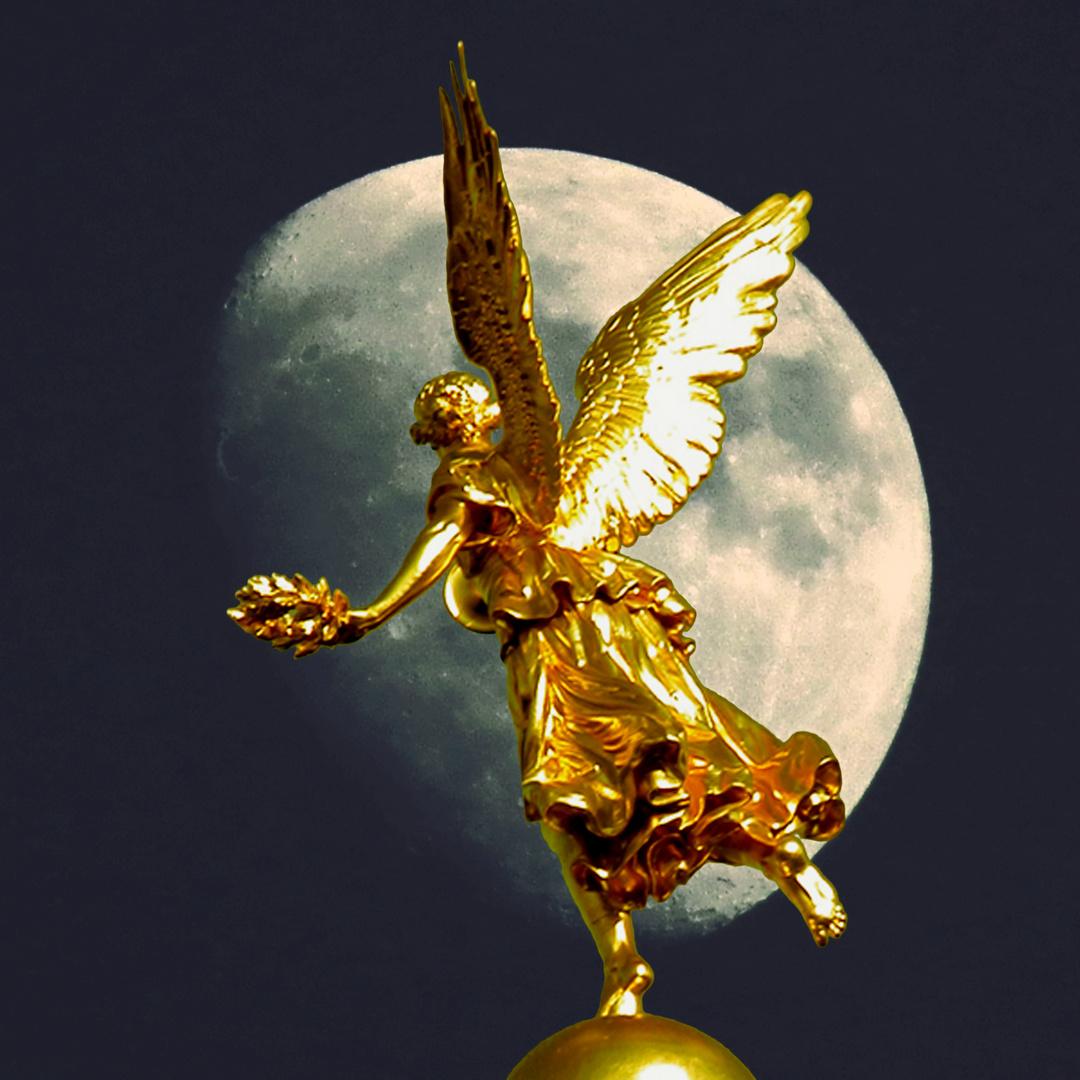 Auch Engel träumen