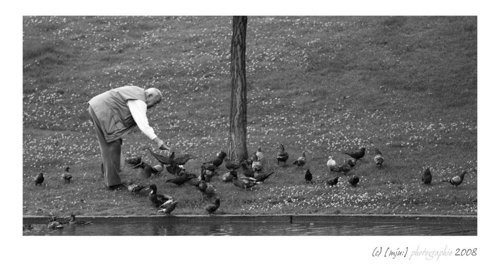 Auch Enten sollen leben...
