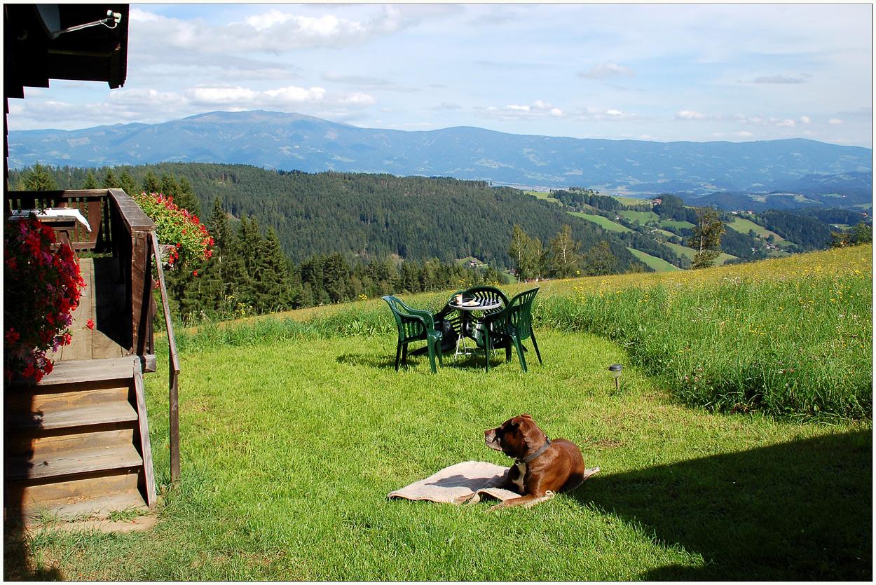 Auch Hund braucht Urlaub...