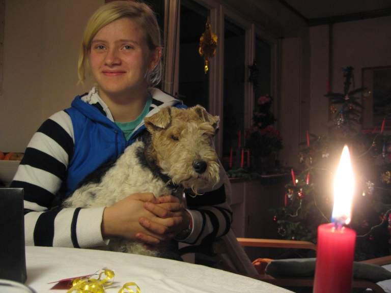 Auch Hunde feiern Weihnachten