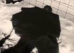 Auch im Land der Schatten spüre ich das ich mein ich aus Stacheldraht ist…
