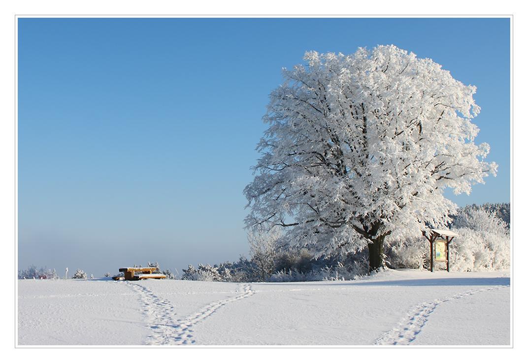Auch im Winter gut besucht