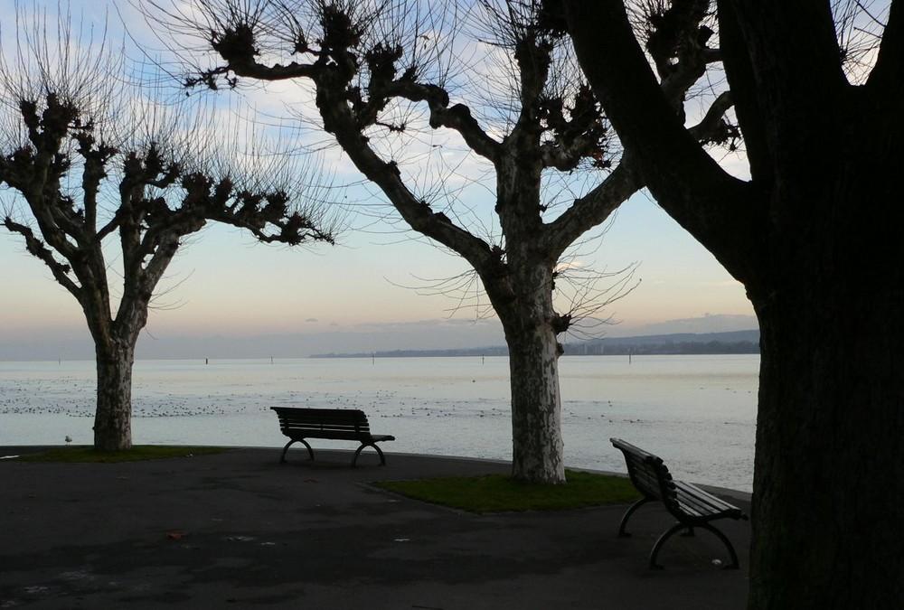 auch im Winter schön, der Bodensee