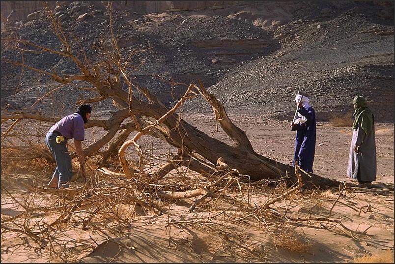 - auch in der Wüste muß geheizt werden ...