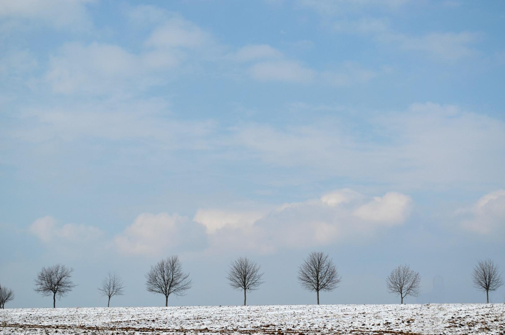 Auch in diesem Winter schien mal die Sonne