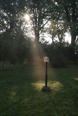 Auch Lampen haben lichte Momente