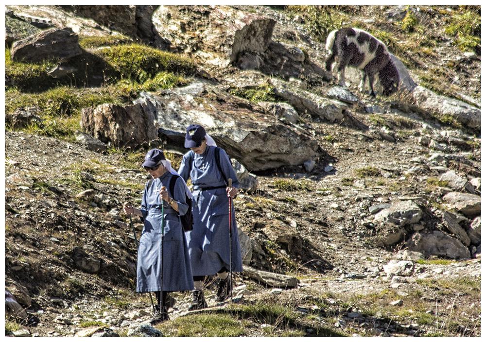 Auch Nonnen....