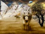 ...auch Pferde haben Engel