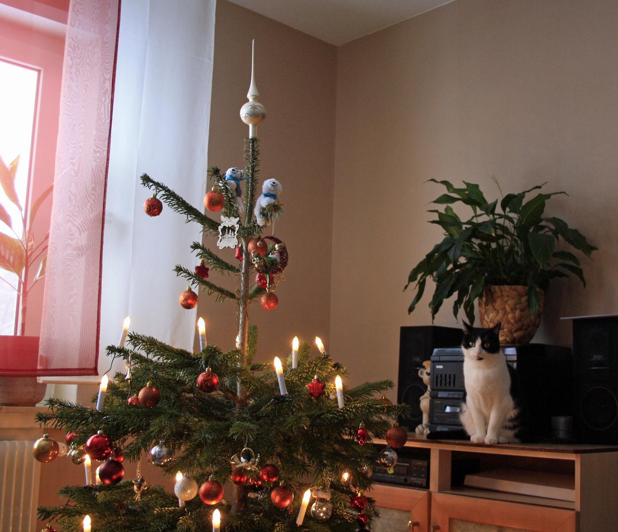 Auch wir wünschen noch schöne Weihnachten!!!