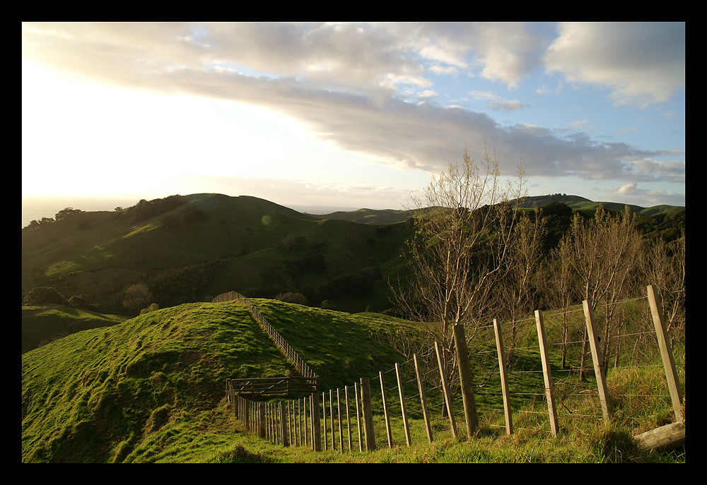 Auenland? Coromandel Hills II