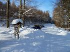 auf, auf, zum Winterspaziergang