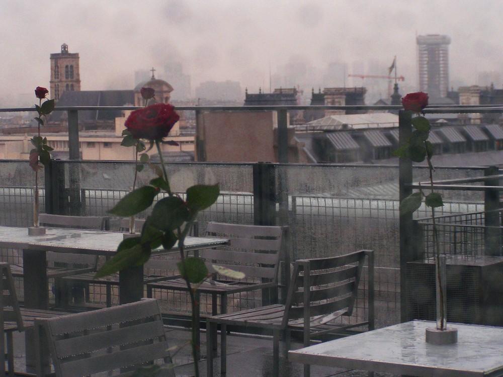 Auf dem Centre Pompidou: Rosen im Regen
