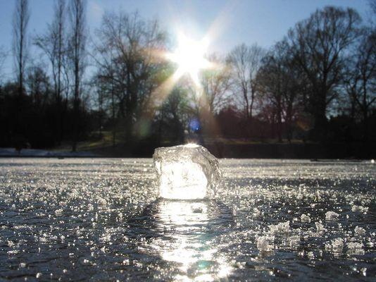 Auf dem Eis...