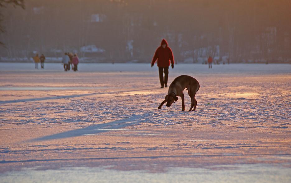 Auf dem Eis des Groß-Glienicker Sees, 11.01.09 – 07