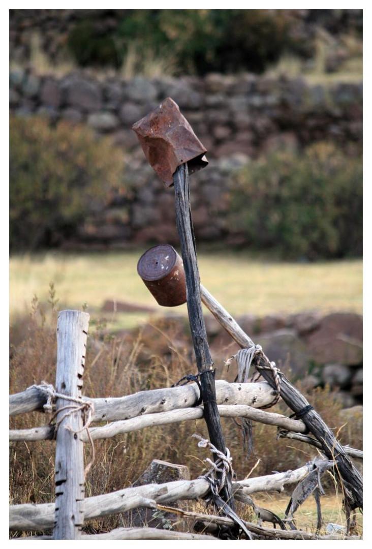 auf dem Feld auf der Llachon Halbinsel (am Titikakasee)