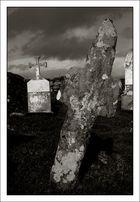 auf dem Friedhof...