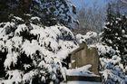 Auf dem Friedhof im Winter