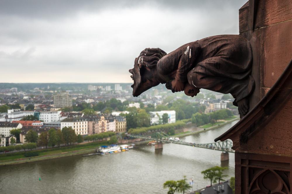 Auf dem Kaiserdom in Frankfurt