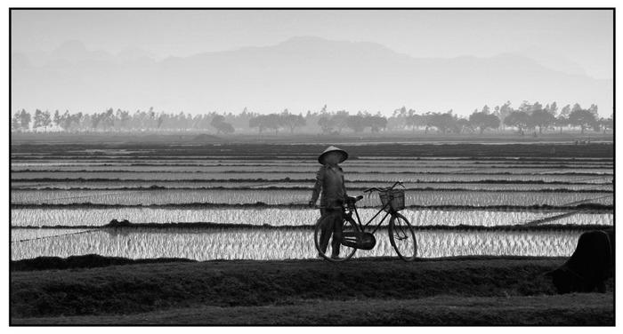 Auf dem Land bei Hanoi - Vietnam