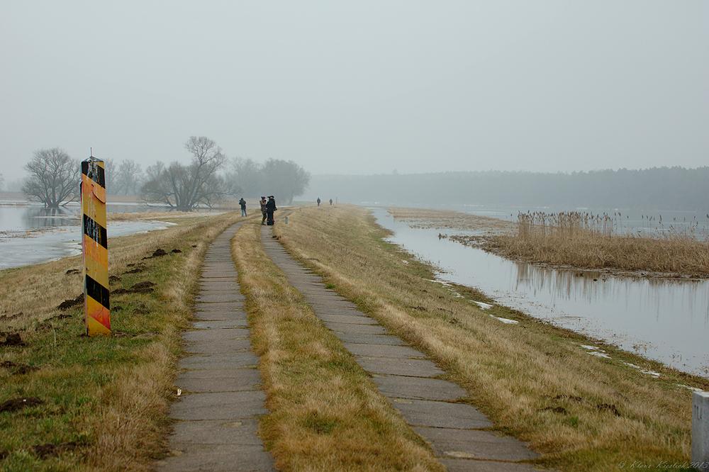 Auf dem Oderdeich in Schwedt