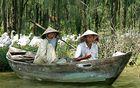 Auf dem Parfumfluss in Vietnam