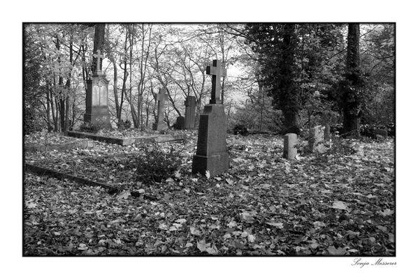 Auf dem Schlossfriedhof
