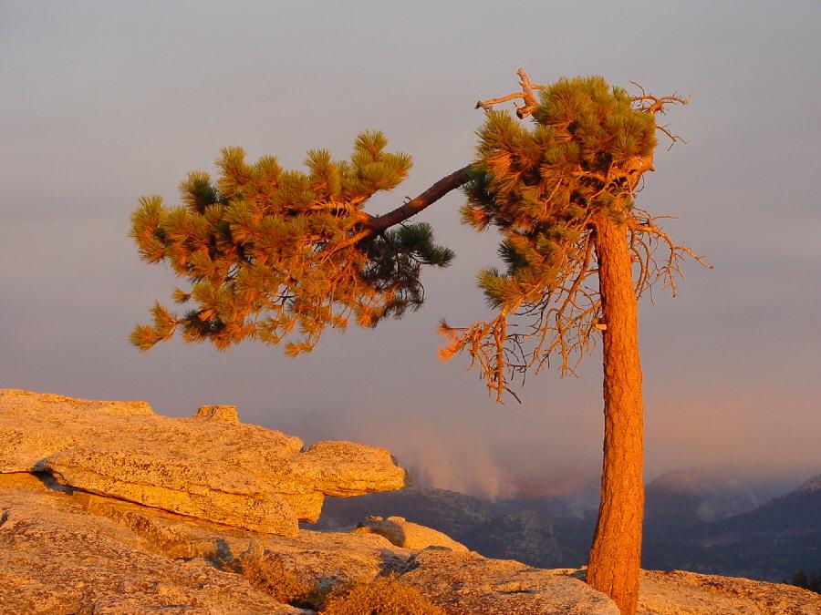 Auf dem Sentinel Dome im Yosemite