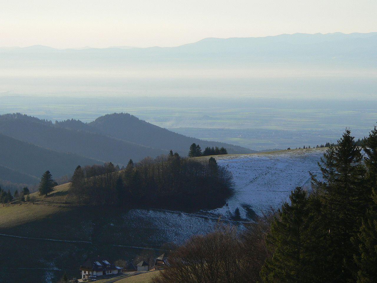 Auf dem Stohren Richtung Rheintal