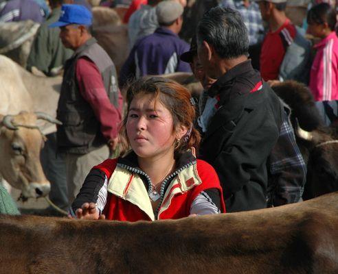 Auf dem Viehmarkt von Karakol/Kirgistan