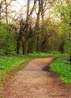Auf dem Weg in den Frühling...