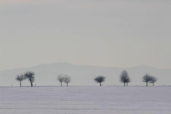 Auf dem Weg nach Altenau