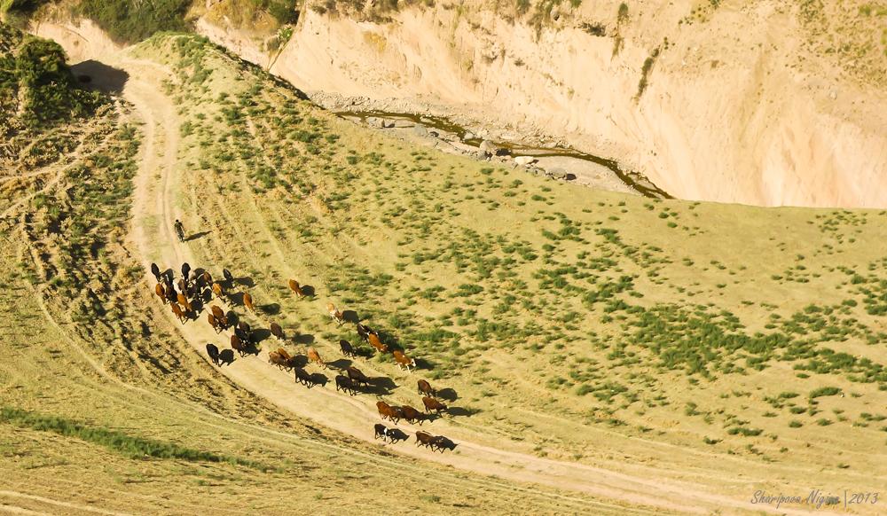 Auf dem Weg nach Duschanbe. Luchob, Tadschikistan 2013.