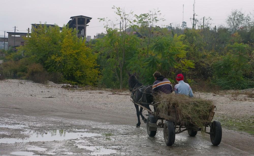 auf dem Weg nach Hause... (Hunedoara / Rumänien 2008)