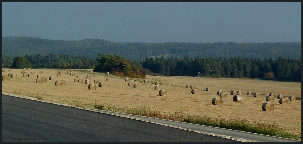Auf dem Weg nach Thüringen...
