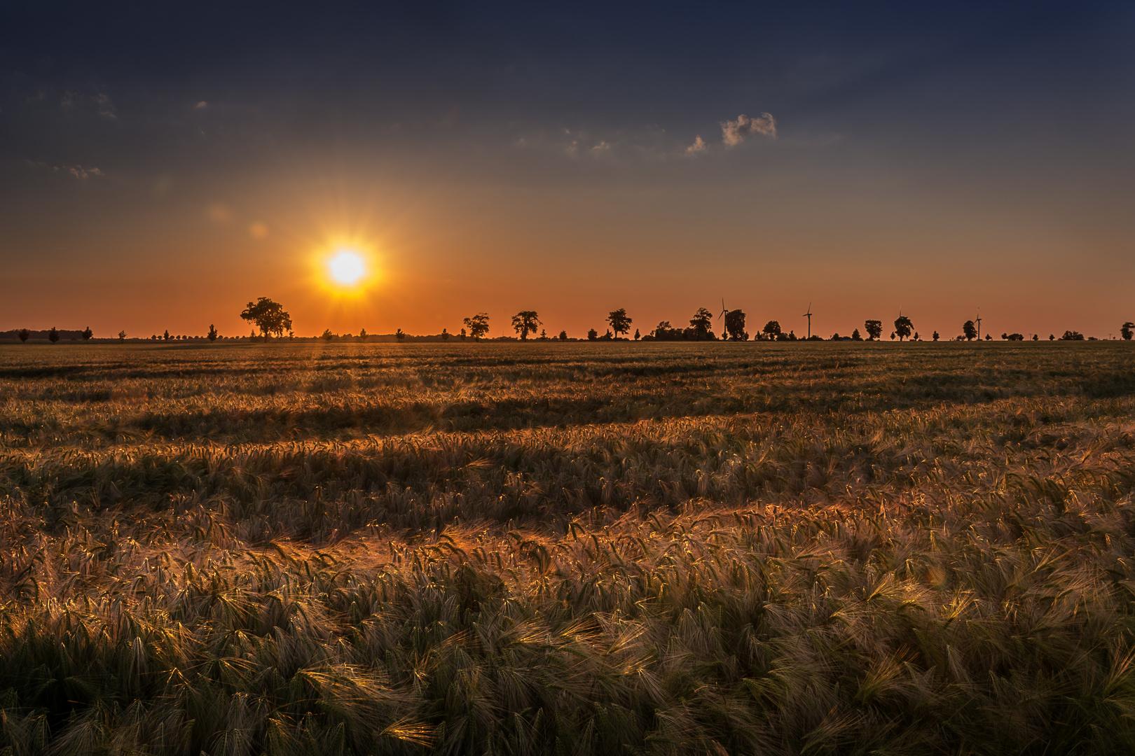 Auf dem Weg Richtung Sonne