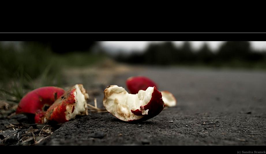 - auf dem Weg zum Apfelbrei -