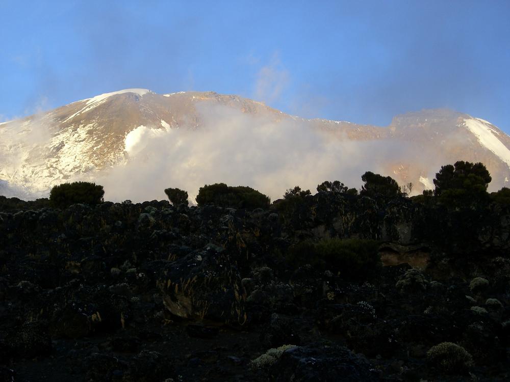 Auf dem Weg zum Kilimanjaro