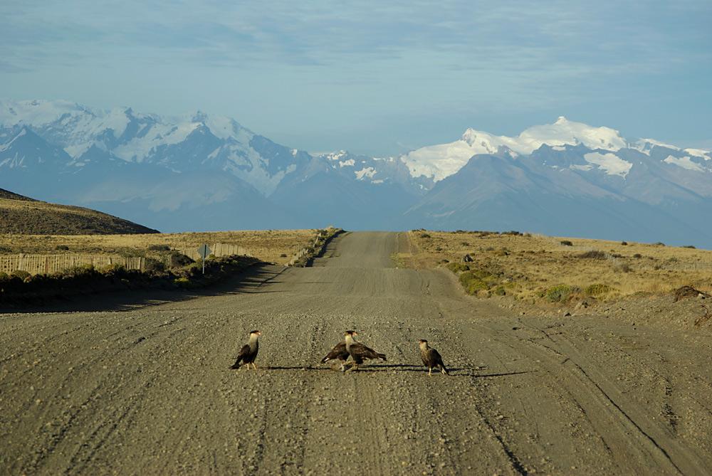 auf dem Weg zum Perito Moreno