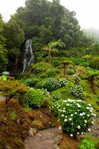 auf den Azoren 3