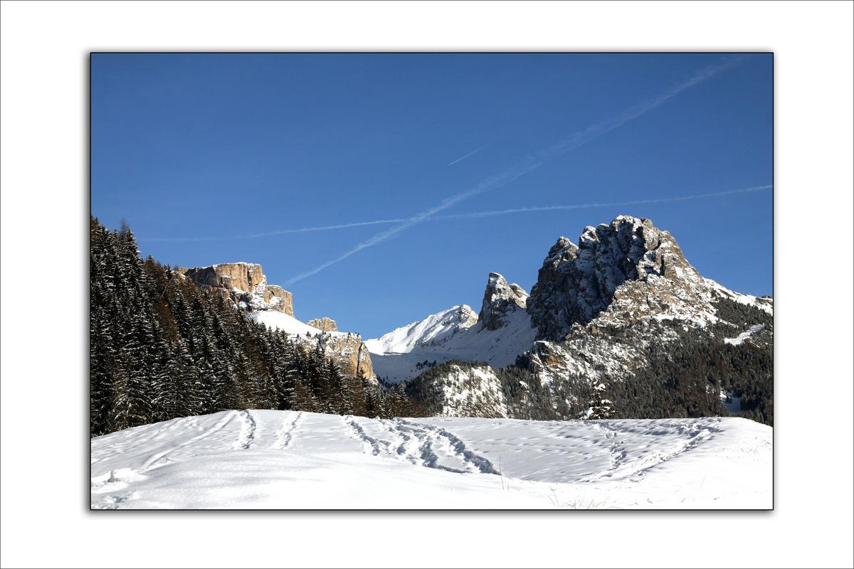 auf den Spuren des Winters