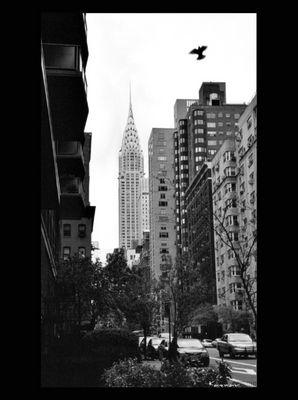 auf den Strassen New Yorks'