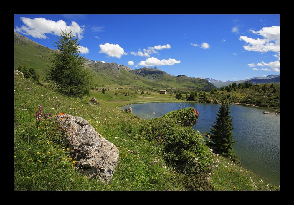 Auf der Alp Flix #3