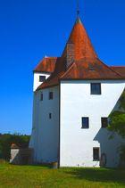 auf der Burg 2