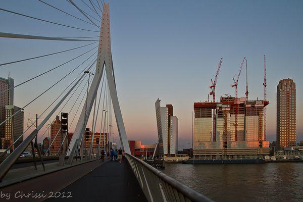 Auf der Erasmussbrücke Rotterdam