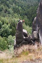 Auf der Flohspitze