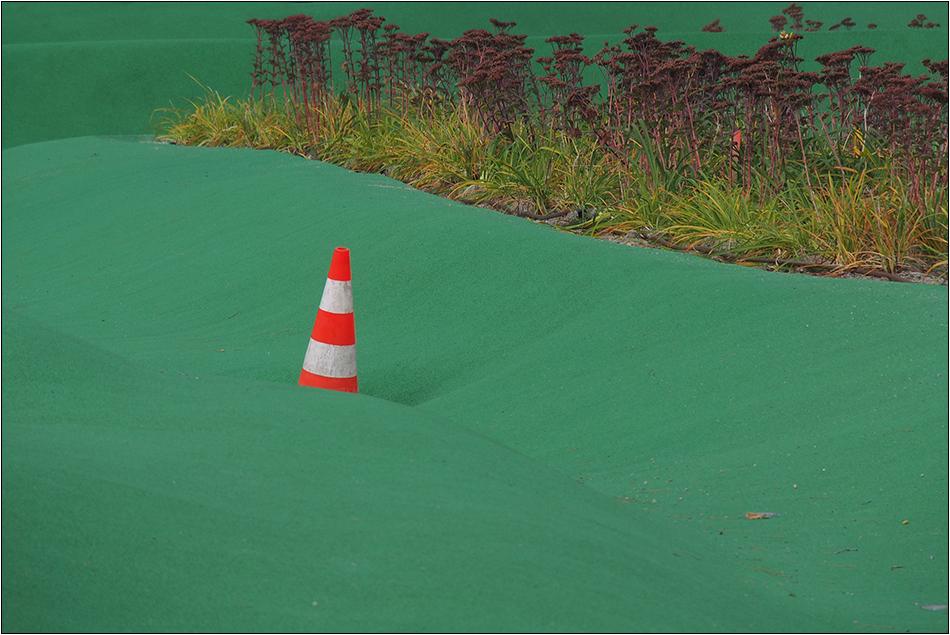 Auf der grünen Wiese ...