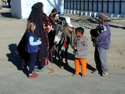 ....auf der Reise von Hurghada nach Luxor......