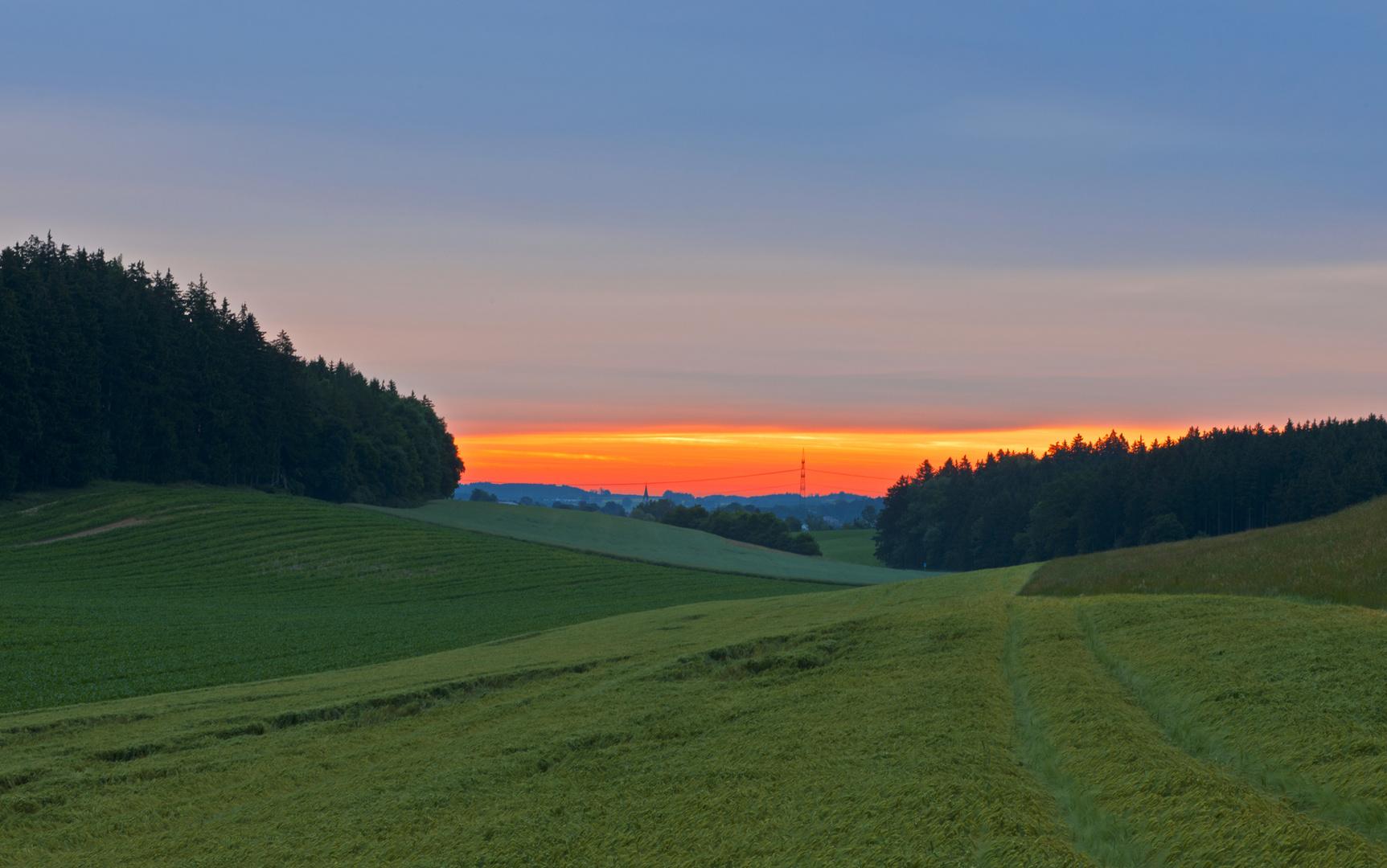 Auf der Suche nach dem Licht - Oberzell bei Friedberg